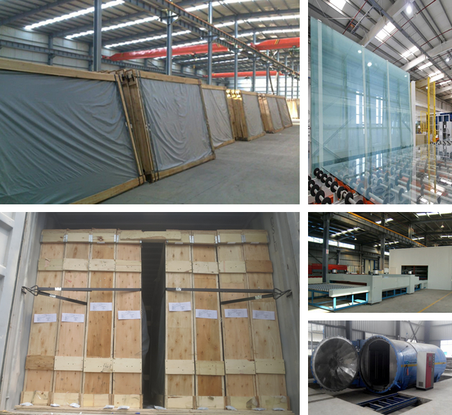 441 color float laminated glass manufacturer